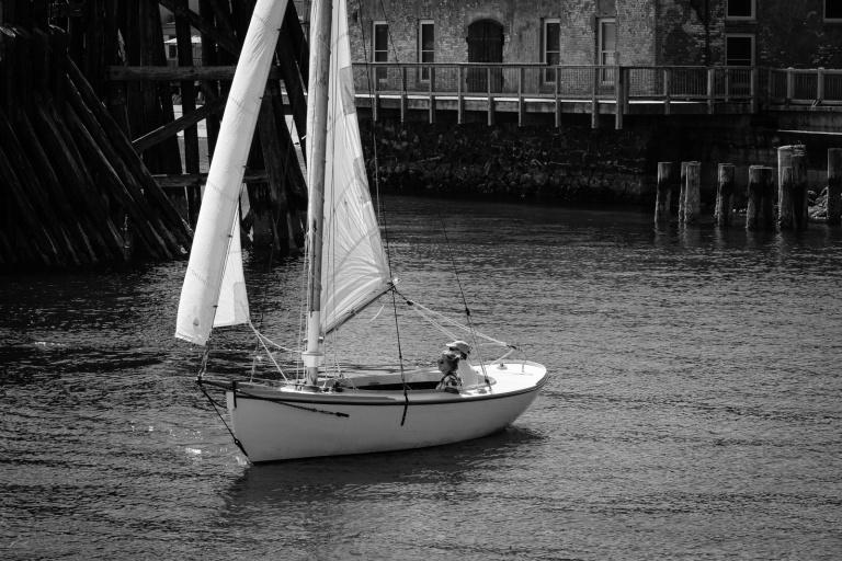 Truant sailing